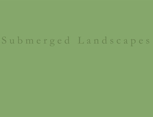 Submerged landscapes